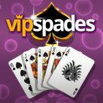 VIP Picas