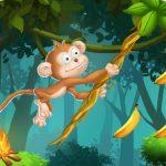 Cuerdas de mono