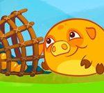 Mango Piggy Piggy Granja Cosecha